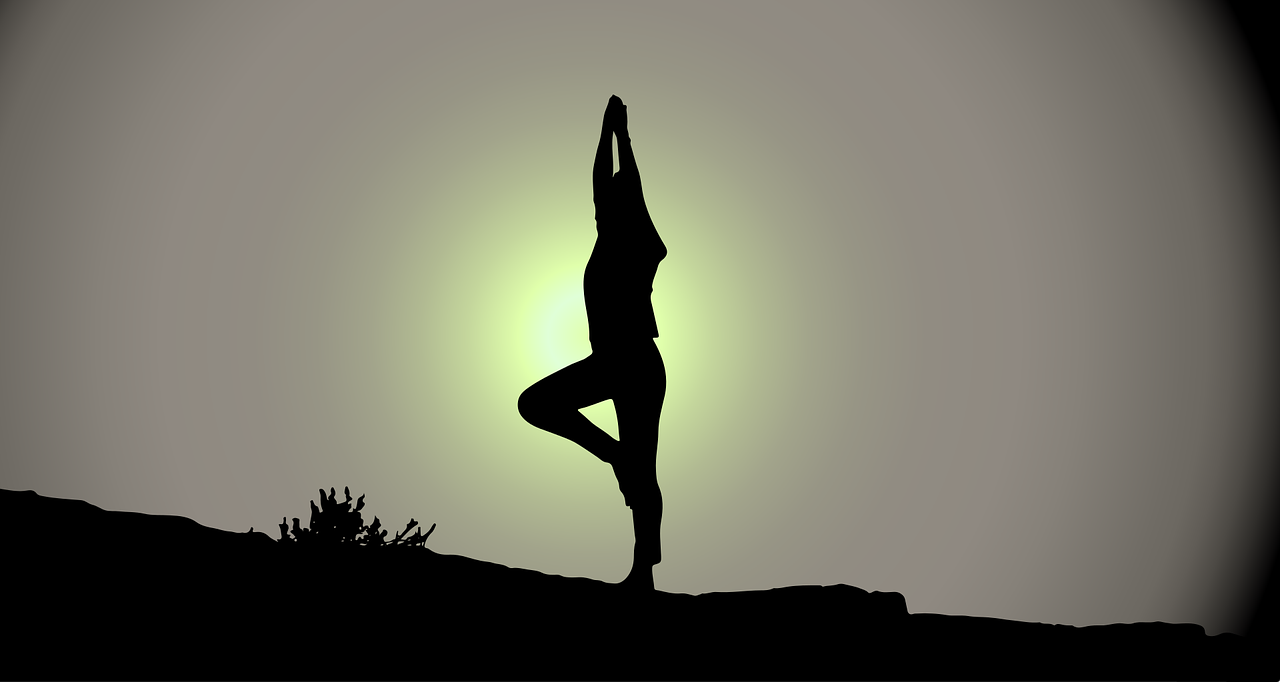 flystein_yoga